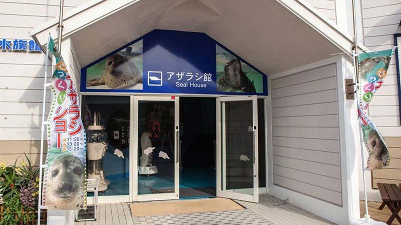 下田海中水族館 アザラシ館