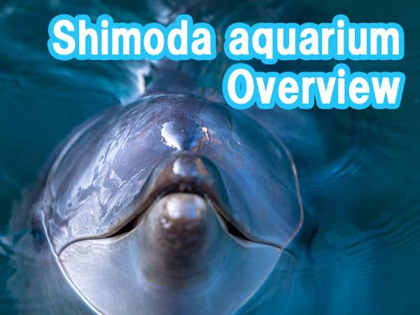 Shimoda aquarium Overview
