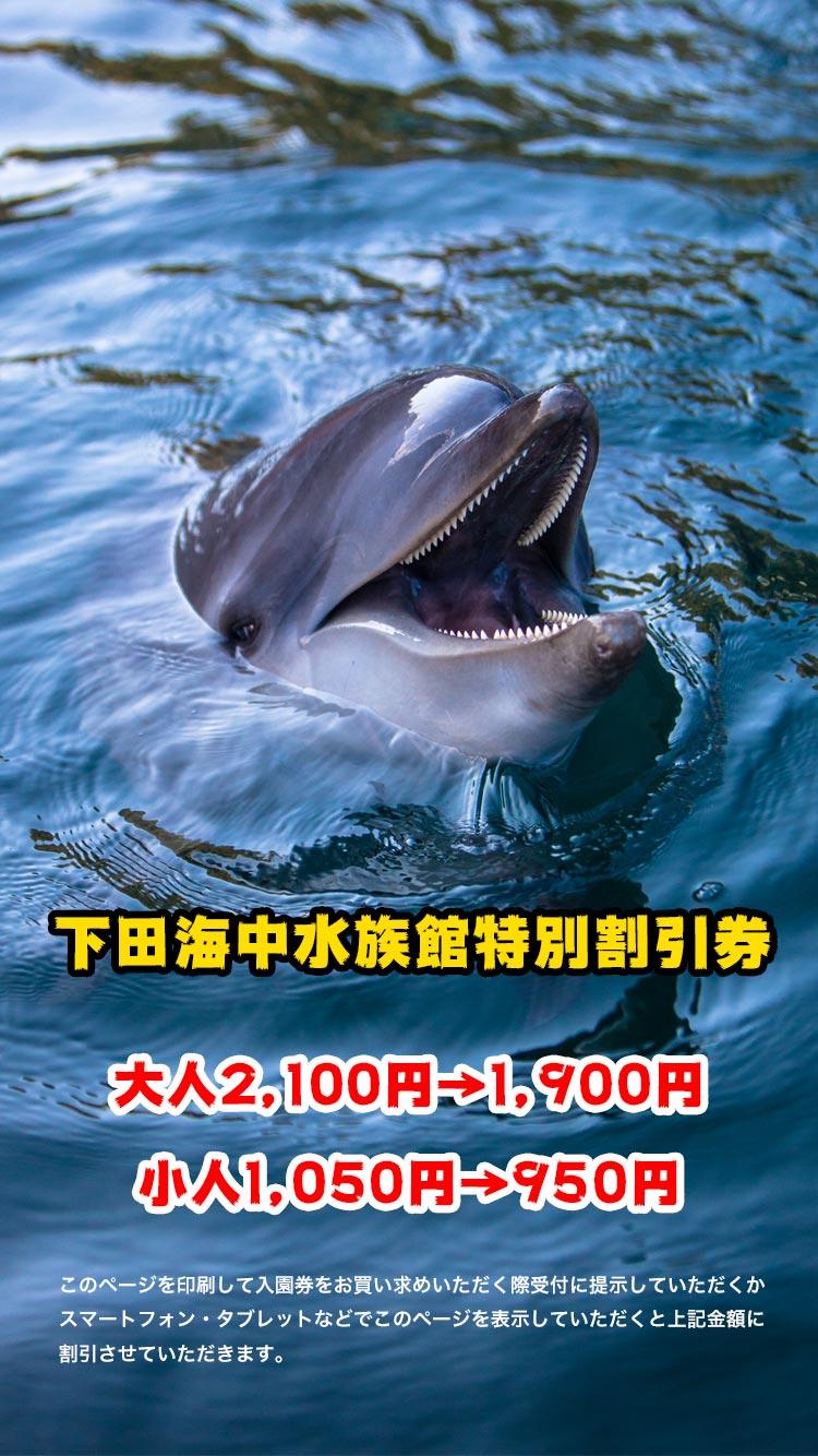 下田海中水族館特別割引券